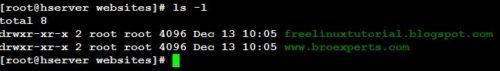 ls -l linux command