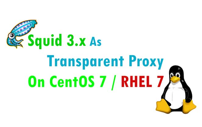 Step by Step ] Configure Squid 3 x as Transparent Proxy on