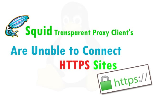 squid-transparent-proxy-https-traffic - Easy Technical Guides for