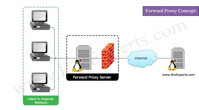 Forward Proxy Server Concept