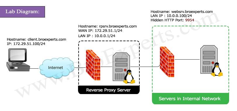 Reverse Proxy Apache Lab Diagram