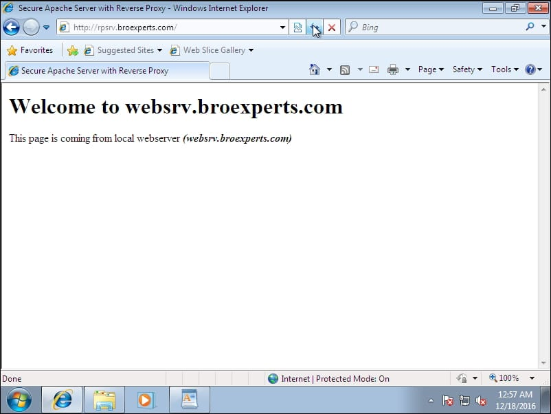 reverse proxy result page