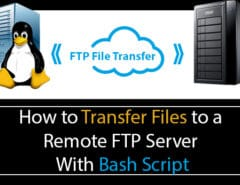 Bash Script FTP Upload
